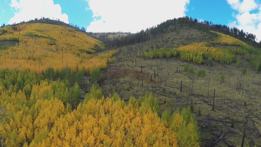 FLAGSTAFF, ARIZONA/USA: September 25, 2015- An aerial camera drone flies over and survey a fire damaged area of the Coconino National Forest near Flagstaff, Arizona.  | Shutterstock HD Video #20577883