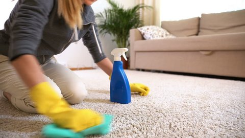 Housewife cleans the carpet with special detergent.
