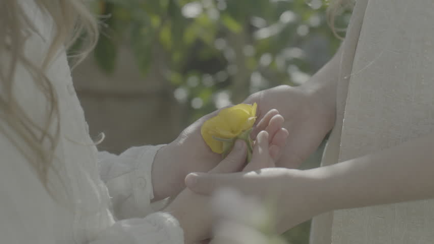 Two little girls examine a yellow flower then press their heads together with glee. Slow motion. | Shutterstock HD Video #20695666