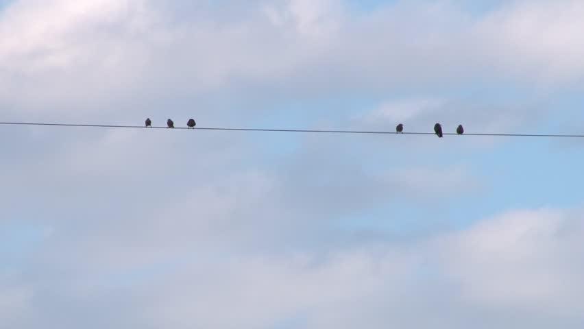 Stock video of tightrope walker sky timelapse. someone walking ...