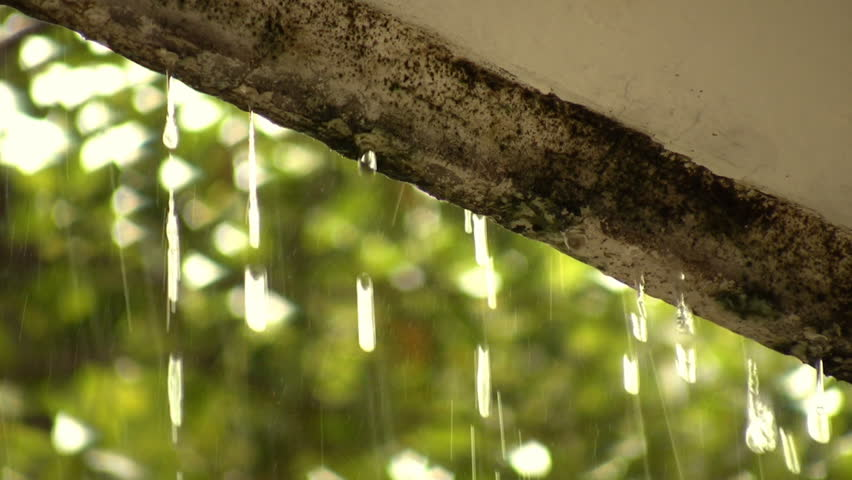 Roof Rain Humidity Damage (HD). Rain falling strongly with focus on a roof siding that has taken humidity damage and moss due to the heavy rainy season. Ambient audio Included.