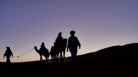 Group of tourist arrive on camels to the Berber cam in the Sahara desert - Morocco
