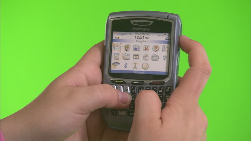 Insert Caucasian Hands Holding Blackberry Stock Footage Video (100%  Royalty-free) 21114106 | Shutterstock
