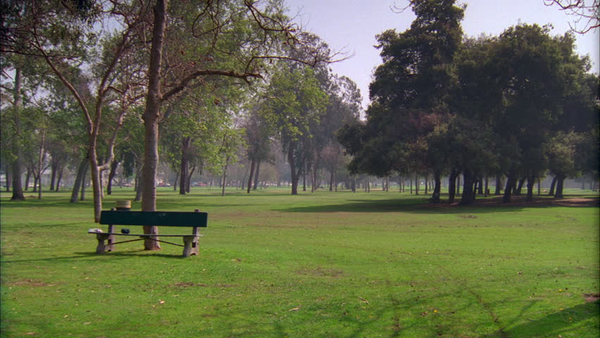 Video Bench Part - 35: Day Hold Grassy Area Park Trees An Empty Bench Then Along Park, No Activity  -