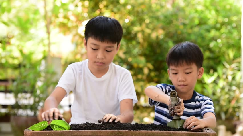 Selective focus at hand, Young Thai boy planting little seedling on the black soil in the garden. Earthday concept.