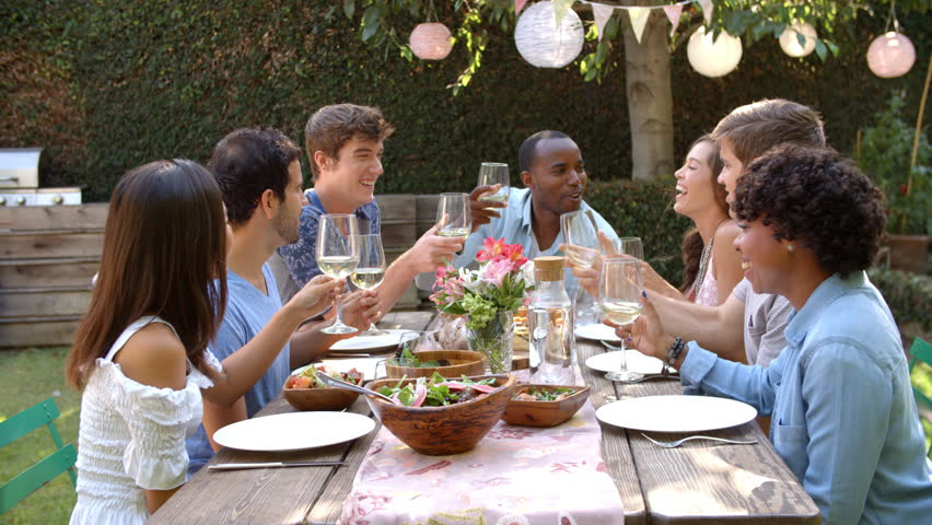 Friends Making A Toast At Outdoor Backyard Party Stock Footage Video 21398986