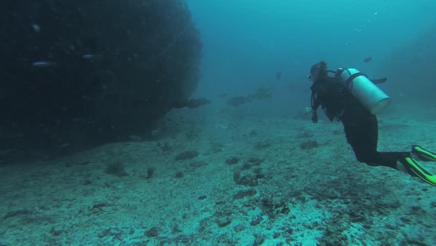 Divers swim underwater with aqualungs. Deepness. Level of oxygen. Sealife. Scubadiving | Shutterstock HD Video #21557125