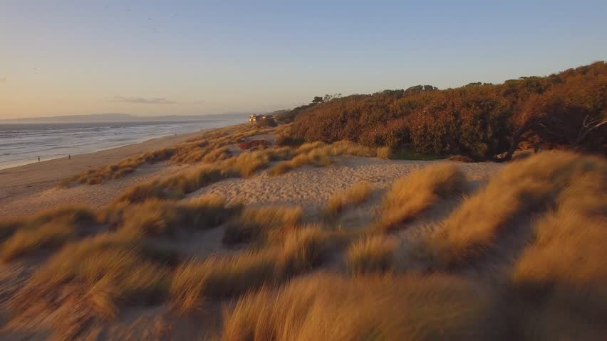 Aerial shot flies over sand dunes at the beach on California coast, rising to reveal the ocean, clear blue sky, and beach houses in the distance. Golden light of sunset. | Shutterstock HD Video #21694207