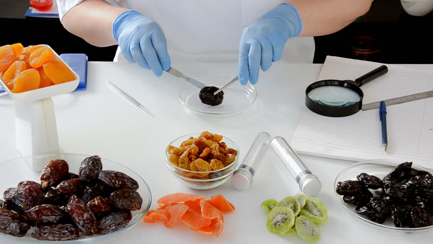 Dry fruit inspection for fungus at a special lab. Prunes are cut in a phytosanitary laboratory then carefully examined with a magnifying glass by inspector's hands in blue latex gloves