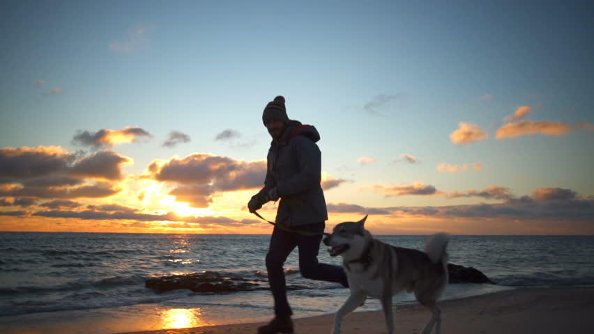 A young man running with a beautiful husky on the...
