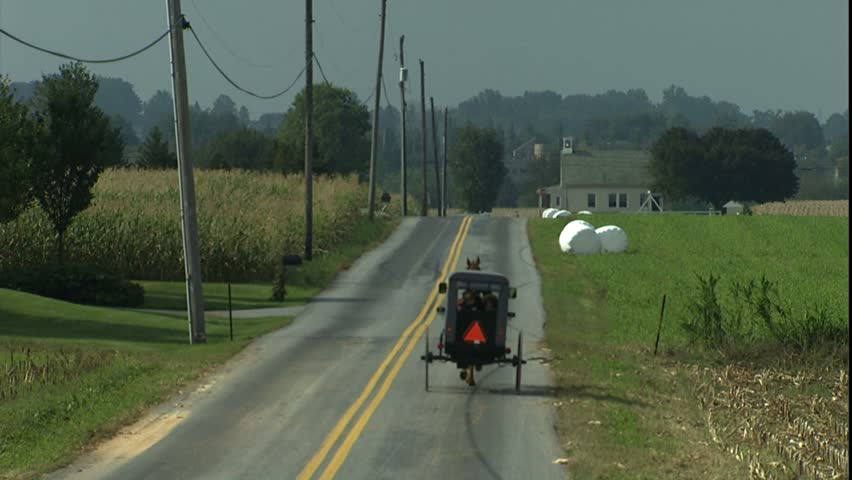 Amish horse and buggy travel down road away from camera, Lancaster, PA