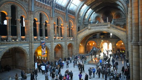 29th december 2016 - People in Natural History Museum hall