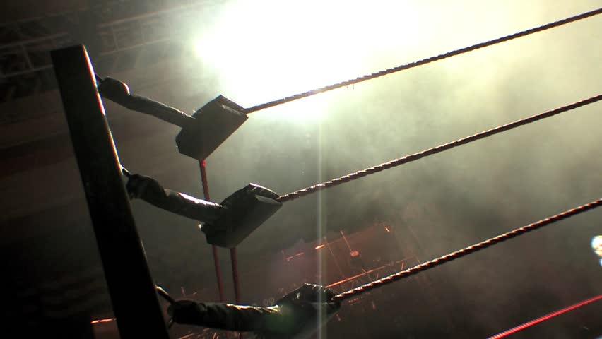 Pro Wrestling Ring Ropes Silhouette - Smoke & Lights
