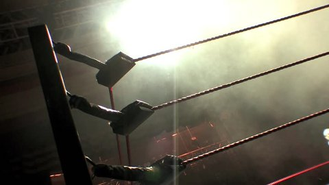 Pro Wrestling Ring Ropes Silhouette - Smoke & Lights