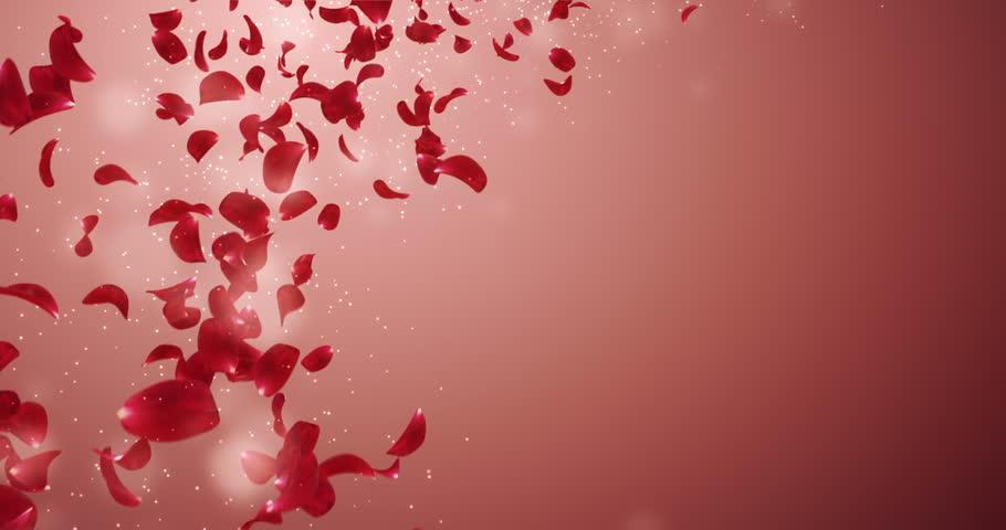 Romantic flying red rose flower petals with place for text romantic flying red rose flower petals with place for text backdrop for st valentines stopboris Gallery
