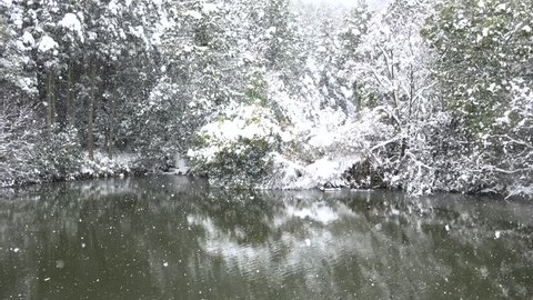 snow blizzard forest and lake,Japan Kyoto