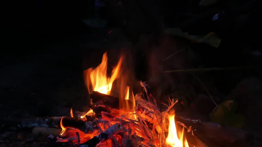 Burning Fire | Shutterstock HD Video #23325196