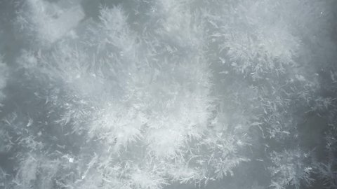 Three different macro shots of growing snow crystals, compilation of ice crystal, collection