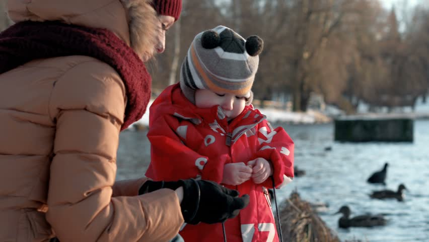 Close shot of little baby boy in winter warm jacket and funny bonnet with young well dressed attractive mother. Mom is feeding birds in park lake. Kid is holding piece of bread in his small hands | Shutterstock HD Video #23481466