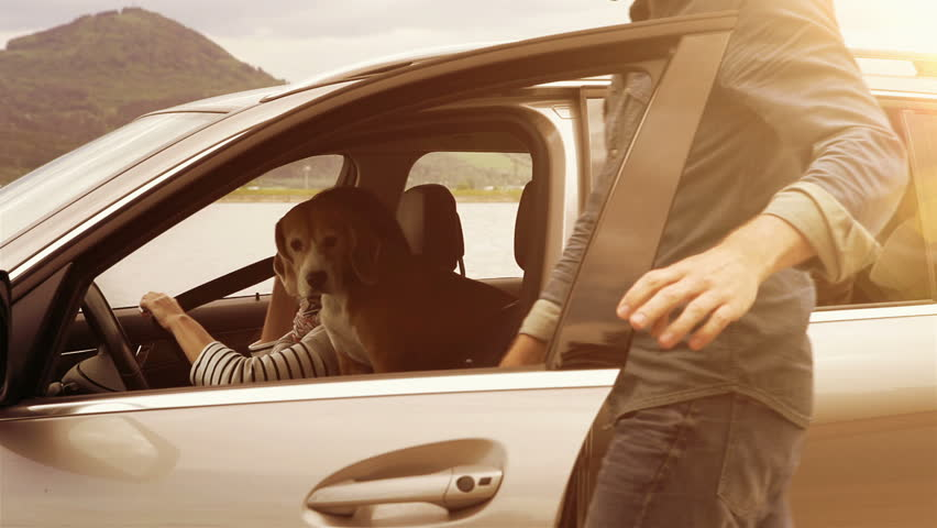 Sunny day footage: family gets in the car, fastens their safety belts and sets off   Shutterstock HD Video #23904844