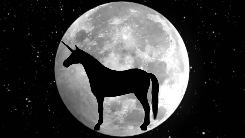 Unicorn. Black silhouette. 4K.