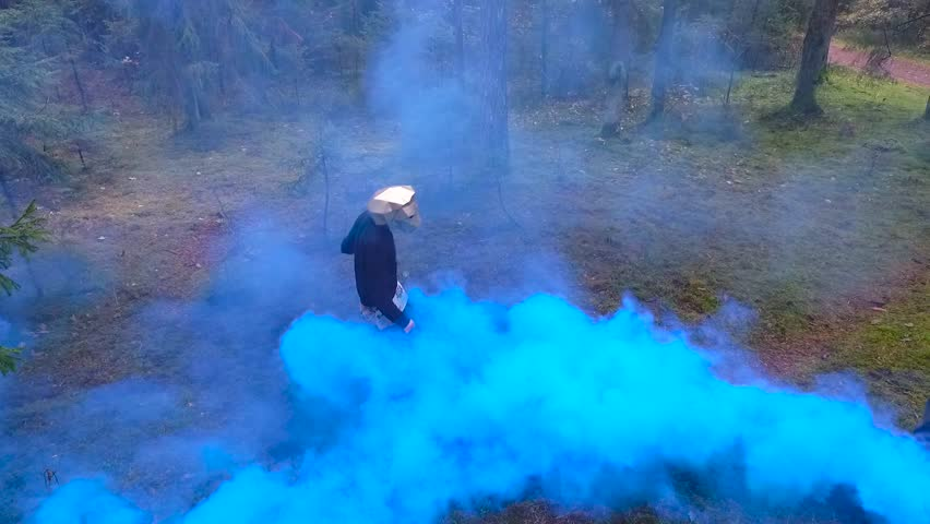 Dancer wearing a low poly lion mask. Slow motion drone video from above of a man dancing in the woods getting fully covered with blue smoke and disappearing in it.  | Shutterstock HD Video #24022396
