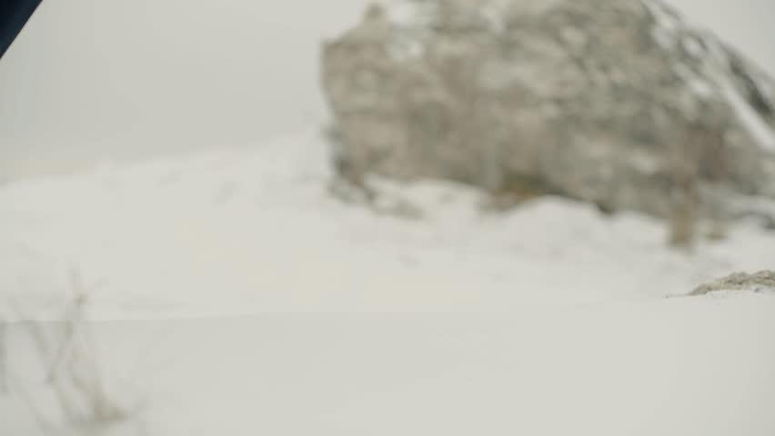 Feet steps snow winter landscape | Shutterstock HD Video #24078976