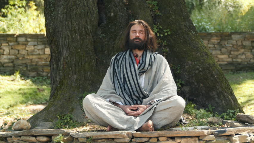 A white man with a beard sitting in meditation with crossed legs under the tree | Shutterstock HD Video #24364046
