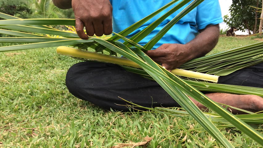 Fijian man create a basket from weaving a Coconut Palm leaves.Travel Fiji culture. Real people copy space