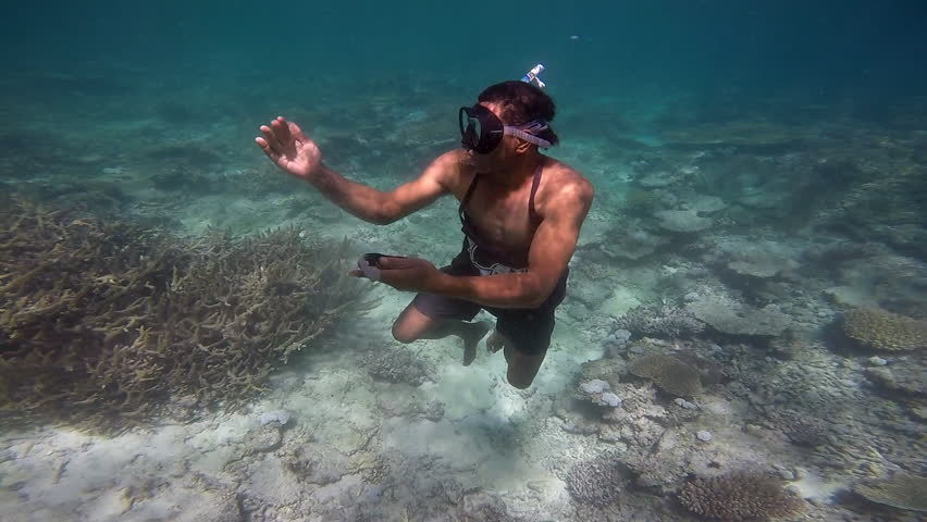 Indigenous Fijian man diving underwater and finding a sea cucumber on the sea floor and show it to a tourist in Fiji. Real people. copy space