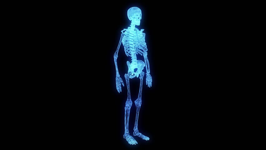 xray of human skeleton jumping with skateboard. 3d rendering like, Skeleton