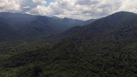 Aerial View of Rainforest, Latin America