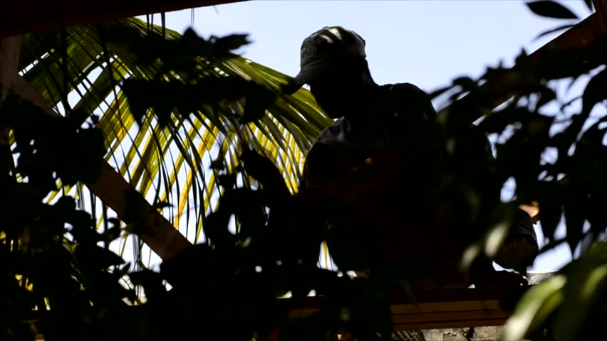 SAN PABLO CITY, LAGUNA, PHILIPPINES - FEBRUARY 27, 2017: Rural carpenter nails into roof beams for the construction of the small native nipa palm hut | Shutterstock HD Video #24601166