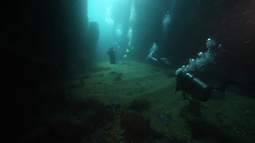 Scuba divers in underwater archway at Poor Knights Islands, New Zealand | Shutterstock HD Video #24612746