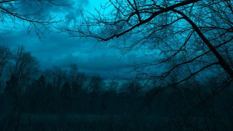 A cinematic tracking shot of woods at night with bare branches and a night cast hue in the sky as the camera tracks to the left in the forests of Mammoth Cave National Park in Kentucky during winter.