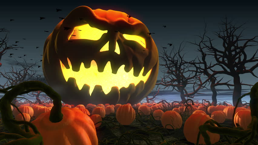 King of pumpkins. Horror  3d animation