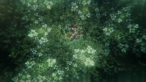 Dreamy Fractal Flowers With Leaves Slowly Turning and Blossoming - Green and Turquoise
