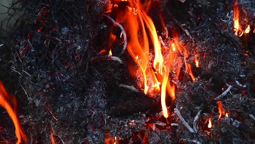 open burning Open burning any burning not specifically authorized by the solid waste management ordinance must be conducted in accordance with state law or regulation.