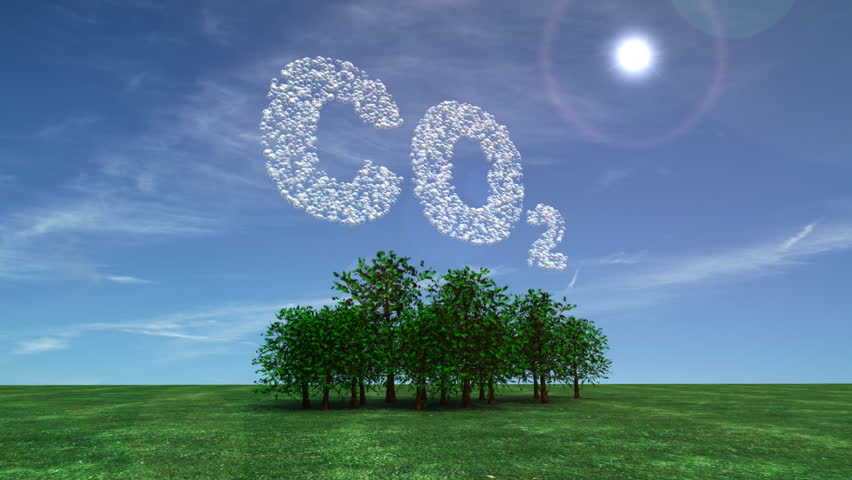 Visualization of carbon dioxide being absorbed from the atmosphere by trees.