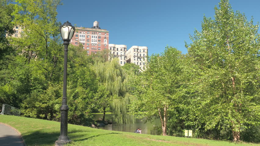 CLOSE UP: Lush green spring foliage on the trees around The Pool in stunning green space Central Park on sunny day in New York. Tall residential buildings and luxury blocks of flats in the background | Shutterstock HD Video #26115326