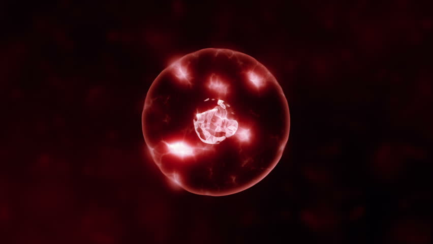 Binary Fission Transparent Cell Division | Shutterstock HD Video #26556446