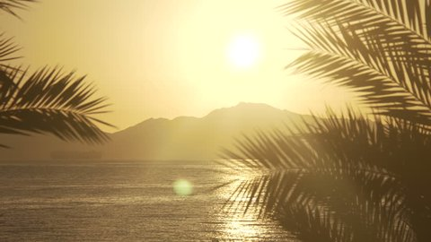 Rising Sun through the palms over the sea and desert mountains