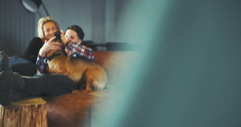LIFESTYLE. Man Having Fun With Dog At Home. Lifestyle background.