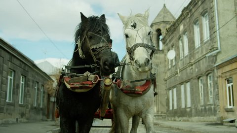 4K. Riding vintage horse carriage on a cobble road. Horse-drawn Carriages runnig. Shot on RED EPIC DRAGON Cinema Camera.