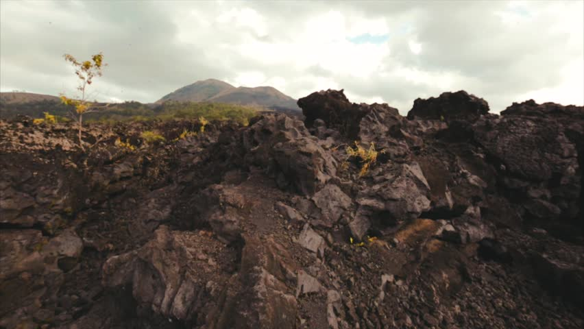 Volcanic stones and rocks closeup. Place near Batur volcano. Cooled ash and lava