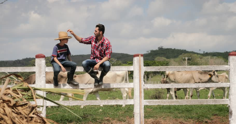 Everyday life for farmer with cows in South American countryside. Peasant work in Latin America with livestock in family country ranch. Manual job and people in small farm, happy father and son