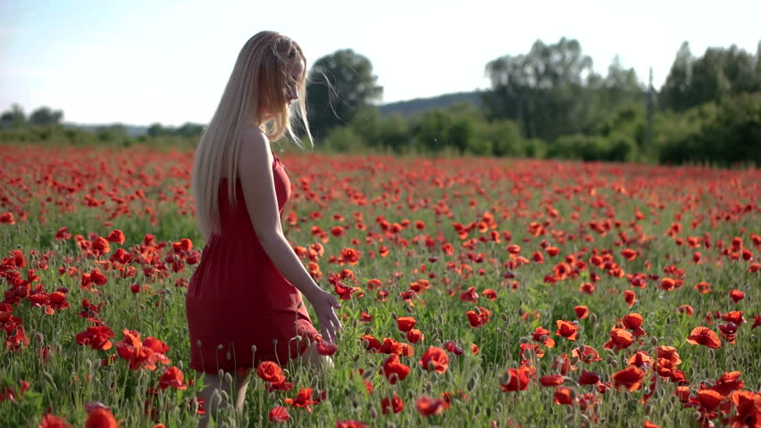 Happy beautiful woman in blossom field arrange a poppy flower in young and hot caucasian girl in red dress with long blond hair walking among blooming poppy mightylinksfo Images