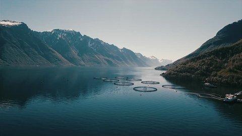 Aerial footage over salmon farm in Ålesund Norway