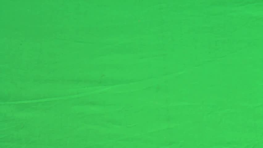 dice roll on a green screen