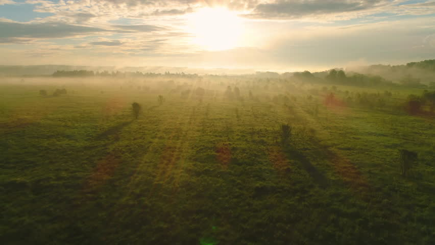 Flying over green meadow and trees at sunrise in fog. Aerial view. | Shutterstock HD Video #28273606